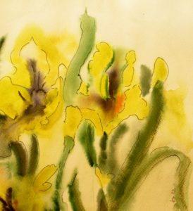 Iris Aquarell 25 x 25 cm i.R